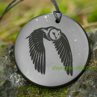 Engraved amulet owl made of shungite