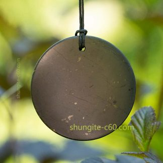 shungite pendant emf protection circle