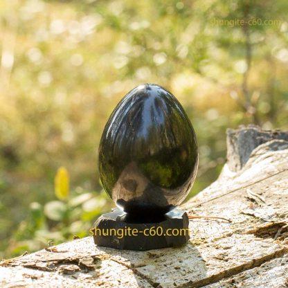 shungite present egg of stone