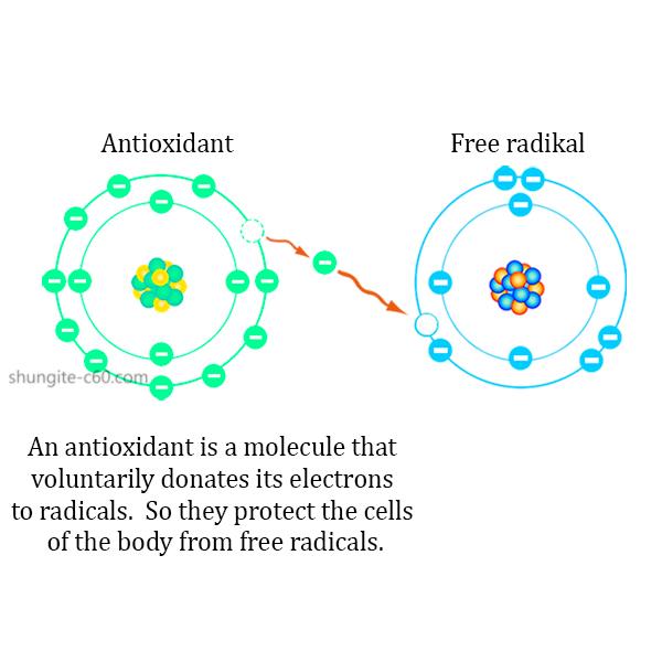 shungite antioxidant