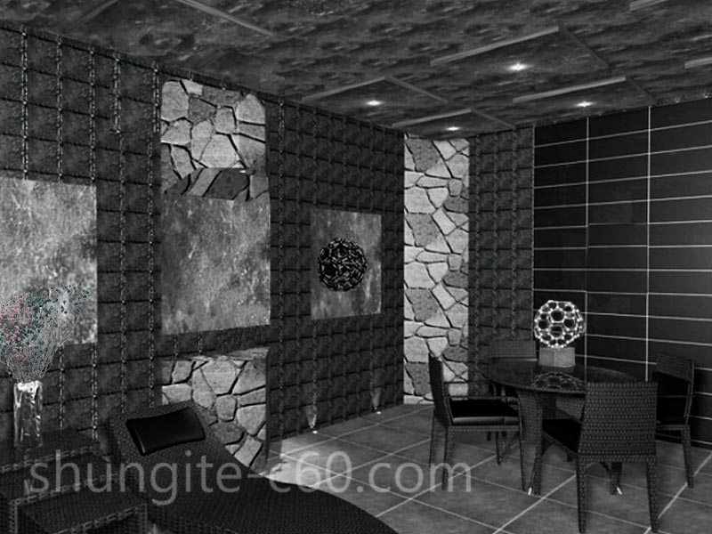 shungite room in medicine