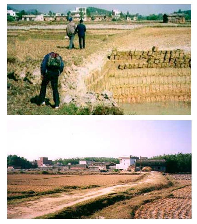 Yangjiang