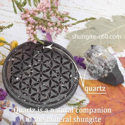 shungite emf plate with engraved flower with quartz veins