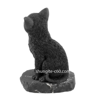 shungite cat from russia