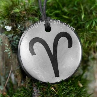 shungite pendant aries