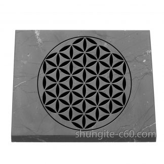 shungite flower of life plate