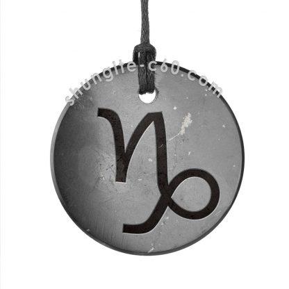 shungite zodiac pendant capricorn