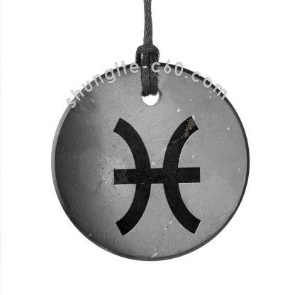 shungite zodiac pendant pisces for EMF protection