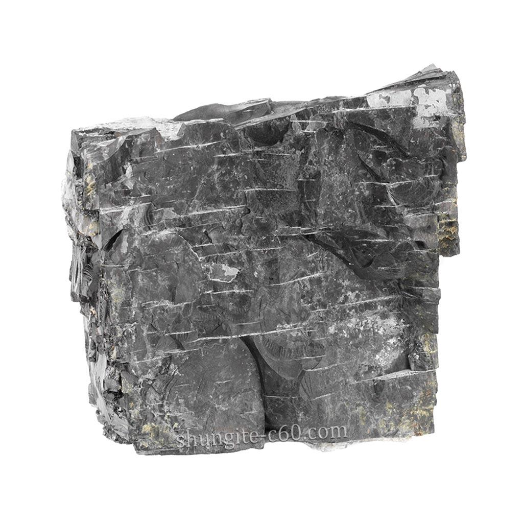 unique carbon shungite type 2